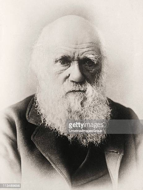 Charles Darwin 1809 1882 English naturalist in old age