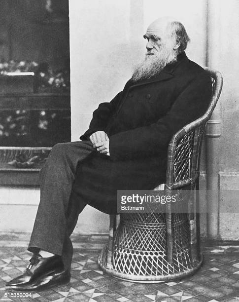 Charles Darwin 1875, photographed by H.P. Robinson.