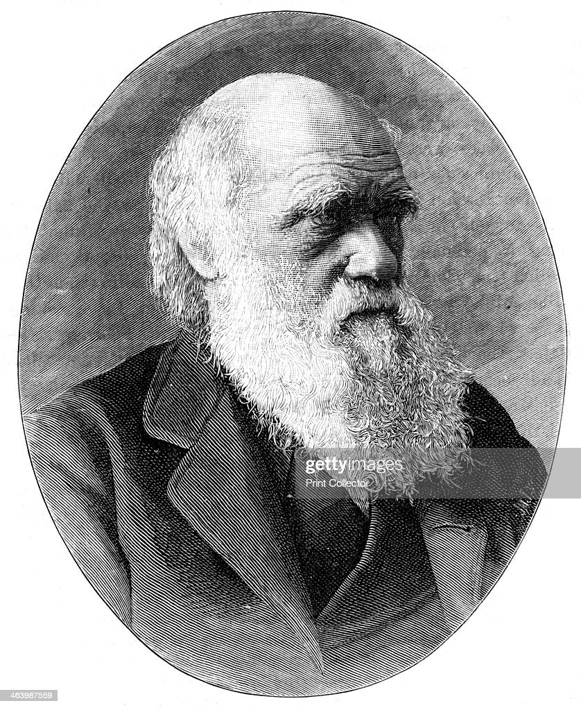 Charles Darwin, 19th century English naturalist, (1900).Artist: Elliott & Fry : News Photo