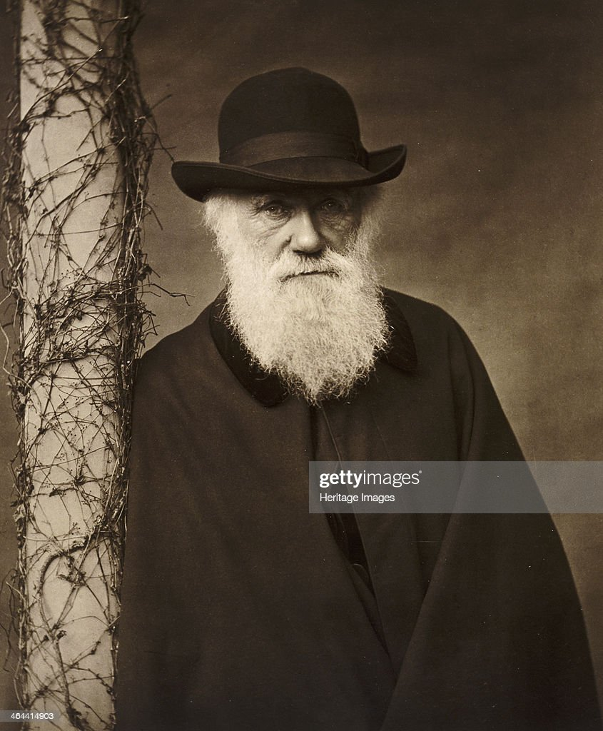 Charles Darwin at his home at Down House, Kent, c1880. : News Photo