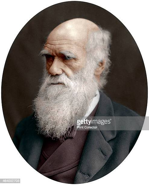 Charles Darwin British naturalist 1878 Darwin started his career on board the HMS 'Beagle' and spent six years surveying the South American seas He...