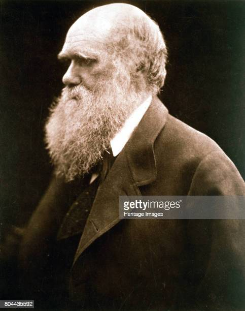 Charles Darwin British naturalist c1870s Darwin started his career on board the HMS 'Beagle' and spent six years surveying the South American seas He...