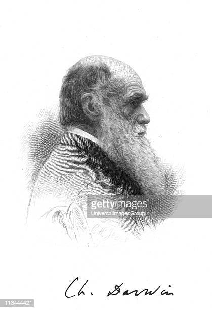 Charles Darwin English naturalist A pioneer of theory of Evolution by Natural Selection Engraving and signature