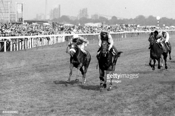 Charles Engelhard's Nijinsky ridden by Lester Piggott beating D Robinson's Meadowvill with J Seagrave up in the St Leger Stakes at Doncaster