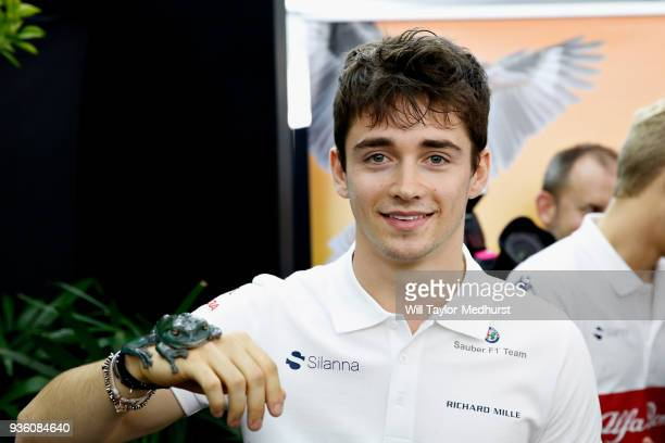 Charles Leclerc of Monaco and Sauber F1 poses for a photo with a frog during previews ahead of the Australian Formula One Grand Prix at Albert Park...