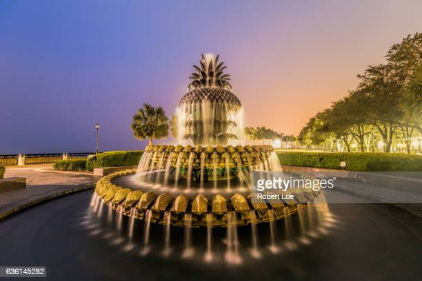 charleston pineapple fountain - south carolina stock pictures, royalty-free photos & images
