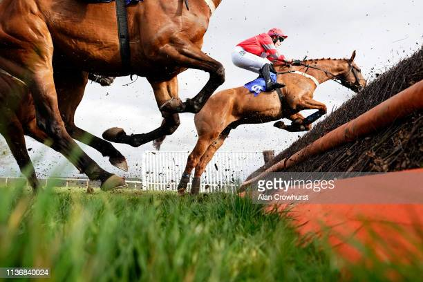 Charlie Hammond riding Midnight Owle on their way to winning The Chetwood Wealth Management Novices' Handicap Chase at Taunton Racecourse on March 19...