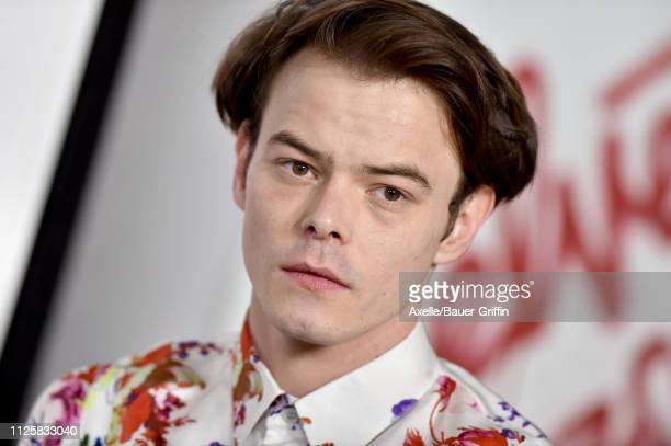 Charlie Heaton arrives at the Los Angeles premiere screening of 'Velvet Buzzsaw' at American Cinematheque's Egyptian Theatre on January 28, 2019 in...