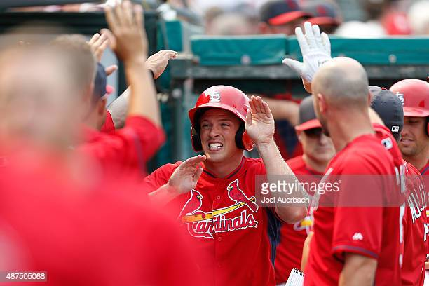 Charlie Tilson of the St Louis Cardinals is congratulated by teammates after scoring the winning run against the Washington Nationals during a spring...
