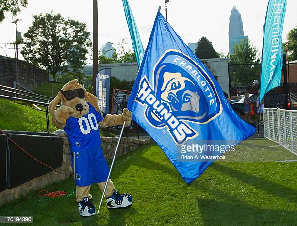 Charlotte Hounds mascot Blue gets ready to lead the team onto the field prior to the Major League Lacrosse match against the Ohio Machine at American...