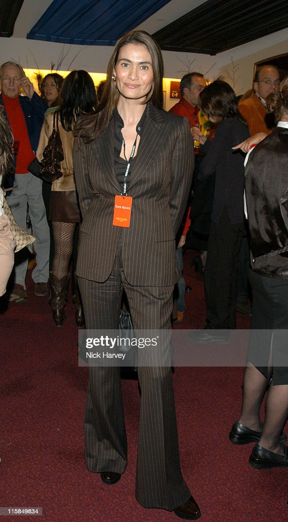 Charlotte Lewis during Cirque du Soleil's 20th Anniversary of 'Dralion' - Arrivals at The Royal Albert Hall in London, Great Britain.