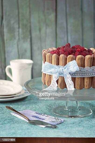 Charlotte sponge with berries