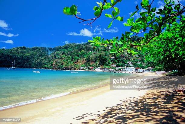 Charlotteville Beach on Tobago, Caribbean