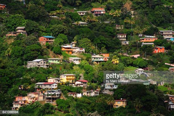 charlotteville, tobago, trinidad & tobago - trinidad and tobago stock pictures, royalty-free photos & images