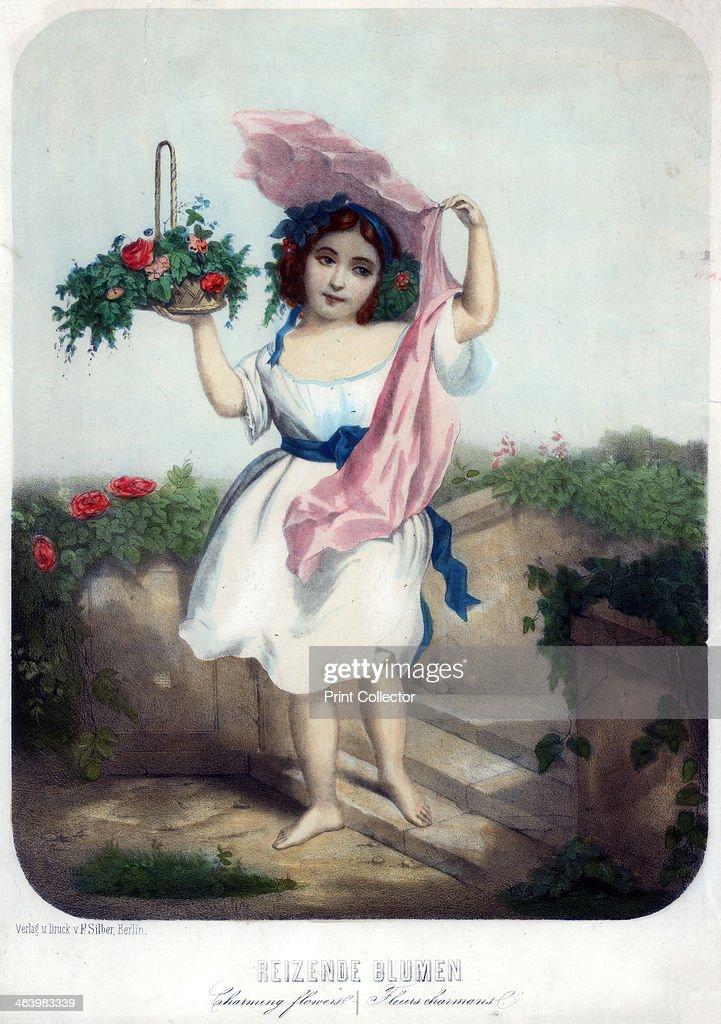 Charming flowers, c19th century.Artist: F Silber : News Photo