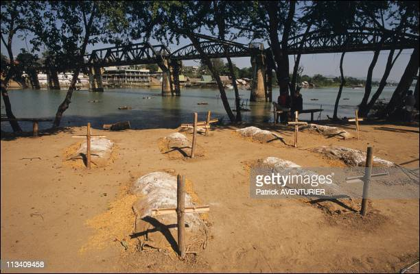 Charnel Near The Bridge River Kwai On November 1St,1990 - The Two Military Cemeteries Of Kanchanaburi Contain The Remains Of 8732 Soldiers Who Paid...
