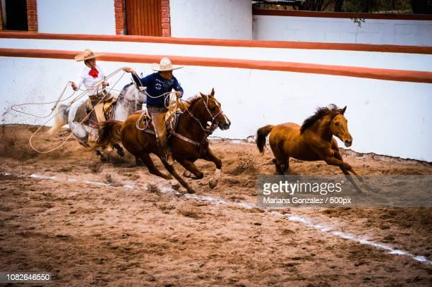 Charreada Premium Pictures, Photos, & Images - Getty Images