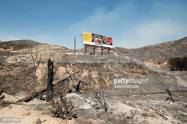 Charred remains are seen along Interstate 15 at Cajon Junction in California on August 18 2016 The Blue Cut Fire has charred more than 35000 acres...