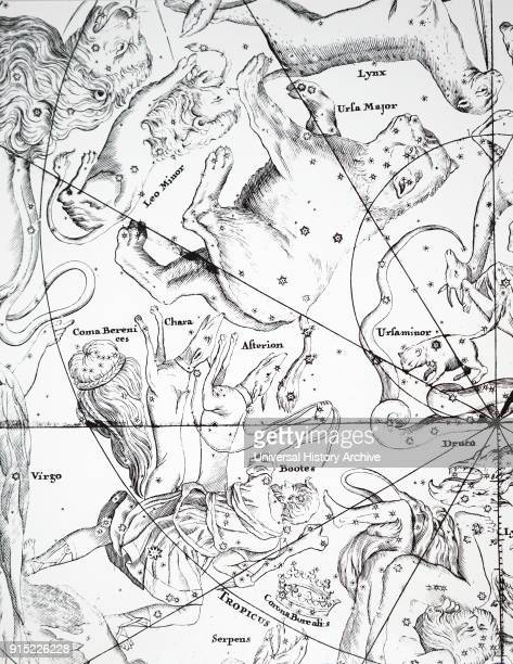 Chart showing constellations in the region of Ursa Major and Bootes Dated 18th century