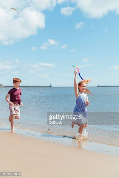 chase me along the sand - beach stock pictures, royalty-free photos & images