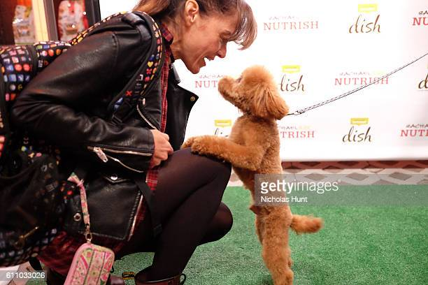 Chase the dog attends the celebration of the launch of Rachael Ray's Nutrish DISH with a Puppy Party on September 28, 2016 in New York City.