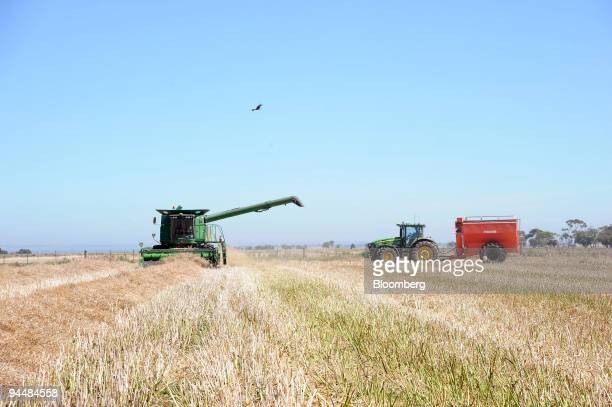 A chaser truck right moves into position to catch harvested canola seeds from the header machine left as it moves through a field in Point Wilson...