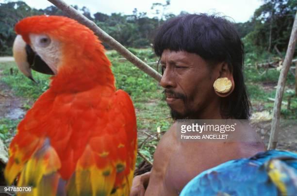 Chaseur indien Huaorani avec ses perroquets capturés en Equateur en 1991