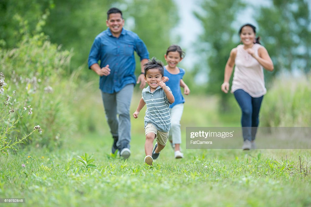 Chasing Each Other Through a Field d : Stock Photo