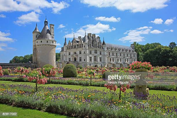 chateau de chenonceau - loire valley stock pictures, royalty-free photos & images