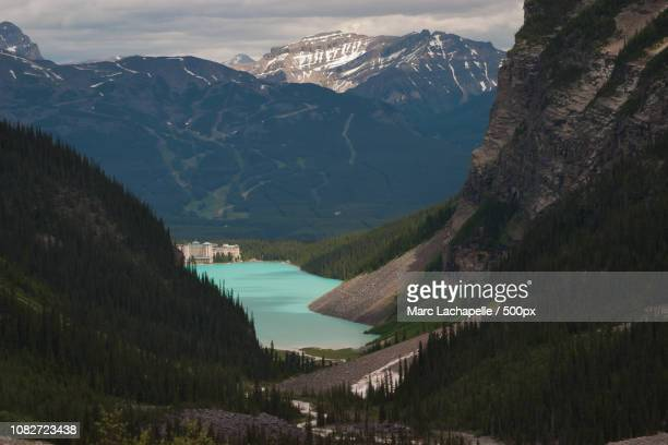 chateau lake louise - chateau lake louise stock photos and pictures