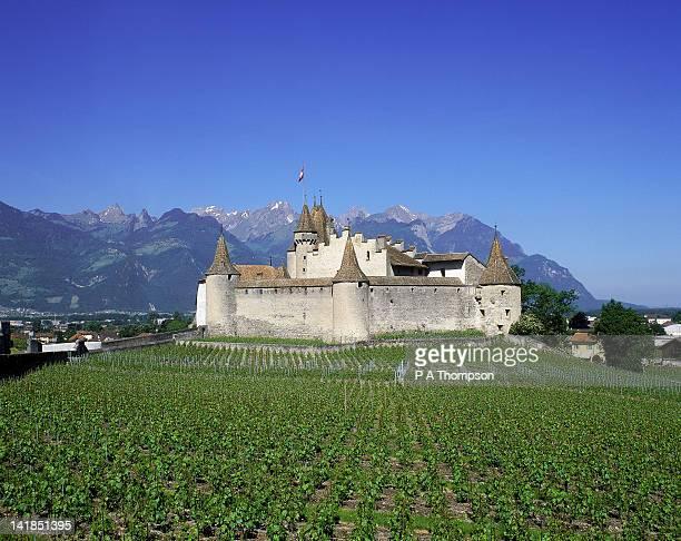 chateau & vineyards, aigle, vaud canton, switzerland - ヴォー州 ストックフォトと画像