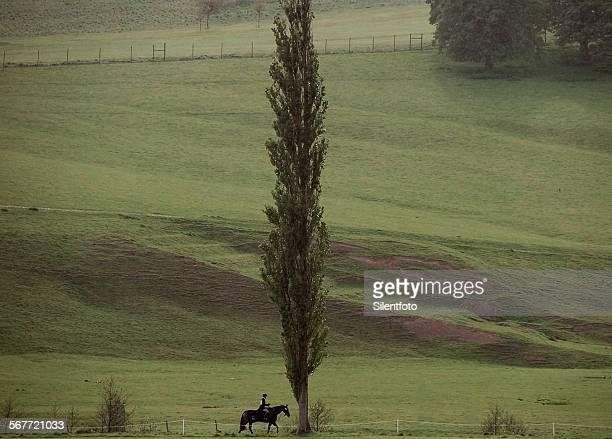 chatsworth rider - chatsworth derbyshire stock pictures, royalty-free photos & images