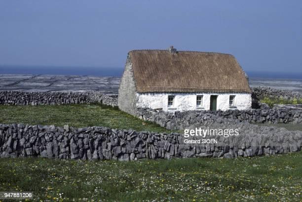 Chaumière de l'île d'Inis Meain en mai 1984 dans l'archipel des îles d'Aran Irlande