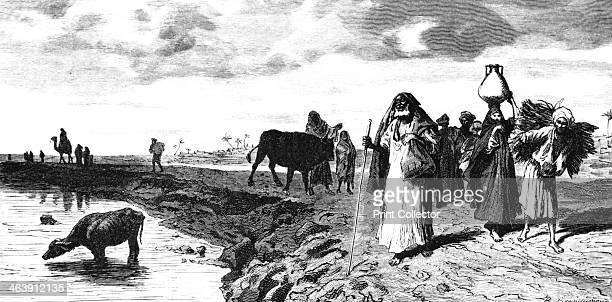 'A Chaussee in the Delta At the time of the flood' 1880 Published in L'Egypt by George Moritz Ebers 1880