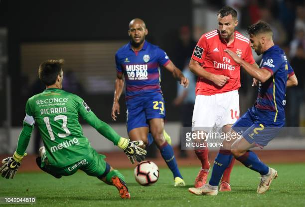 Chaves' Portuguese goalkeeper Ricardo Nunes stops a ball from Benfica's Swiss forward Haris Seferovic during the Portuguese league footbal match...