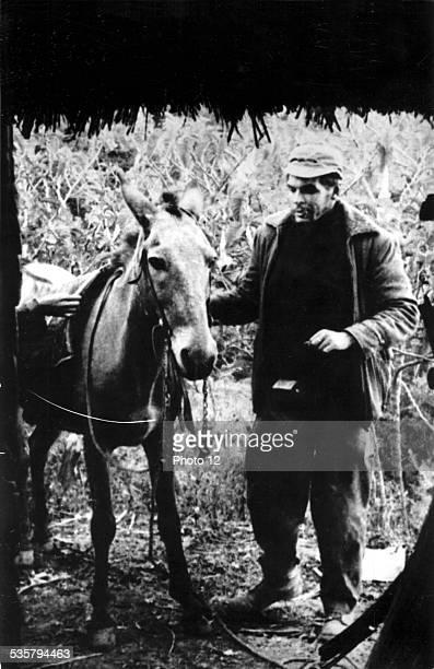 Che Guevara in the Sierra 20th century Bolivia