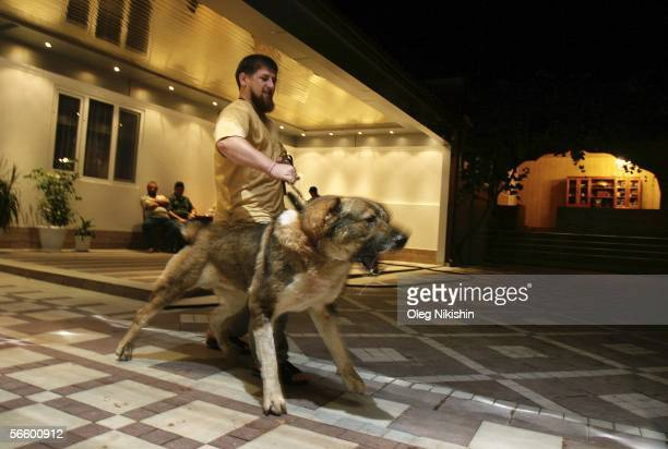 Chechen First Deputy Prime Minister Ramzan Kadyrov plays with his dog in his residence near the village of Centoroy Chechnya 3 August 2005 Ramzan...