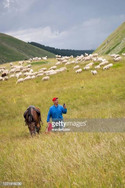 controllo della ricezione telefonica in abruzzo, italia - parco nazionale d'abruzzo foto e immagini stock