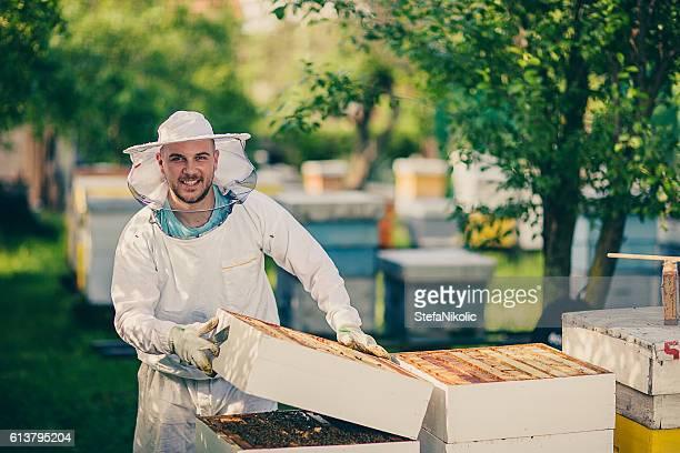 Überprüfung der hives
