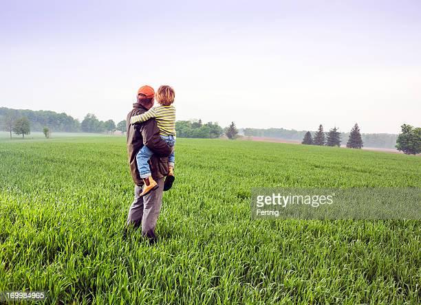 Verificar los campos de trigo