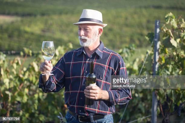 comprobación de la calidad de los vinos - chardonnay grape fotografías e imágenes de stock