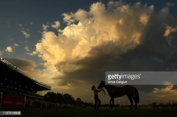 Cheer Leader poses with strapper after winning Race 2 World Horse Racing Trophy during Melbourne Racing at Moonee Valley Racecourse on March 22 2019...