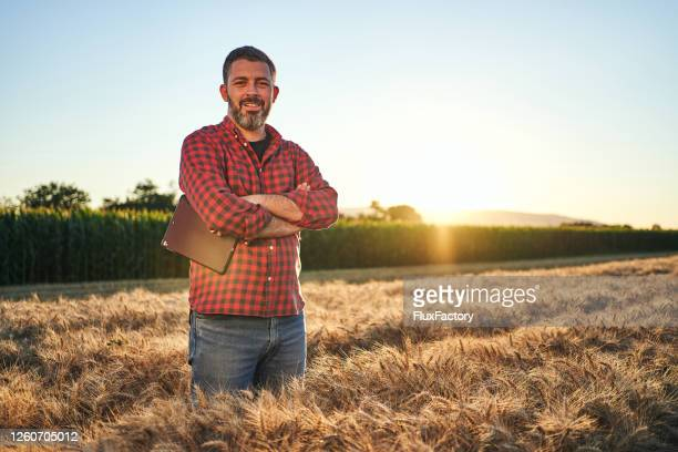 cheerful and satisfied agronomist in a wheat field - agronomist stock pictures, royalty-free photos & images