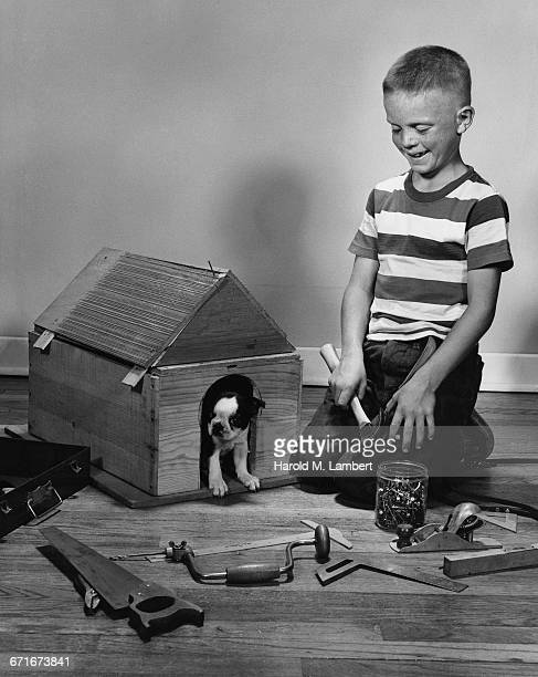cheerful boy looking to handmade doghouse - pawed mammal stock pictures, royalty-free photos & images