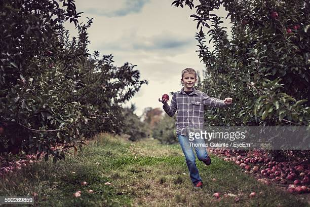 Cheerful Boy Running In Apple Orchard