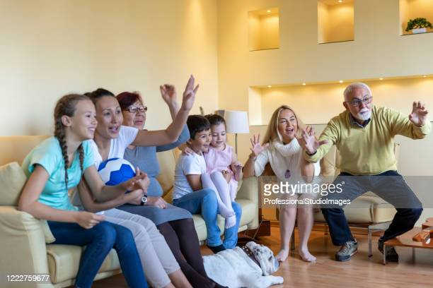 cheerful family supports national soccer team and celebrating a win. - chinese bulldog stock pictures, royalty-free photos & images