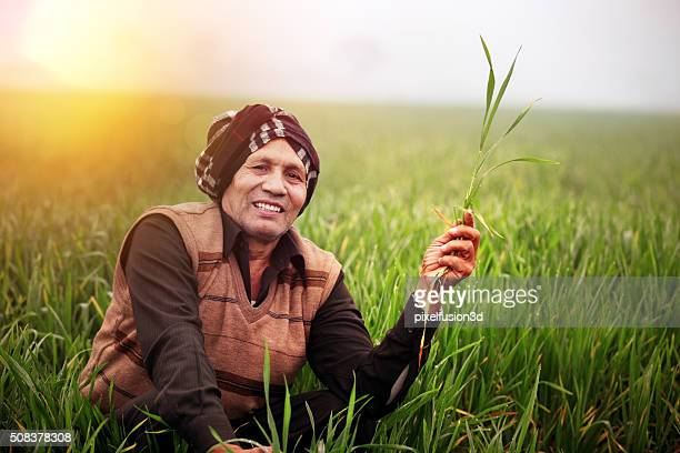 Cheerful Farmer Sitting in the Green field