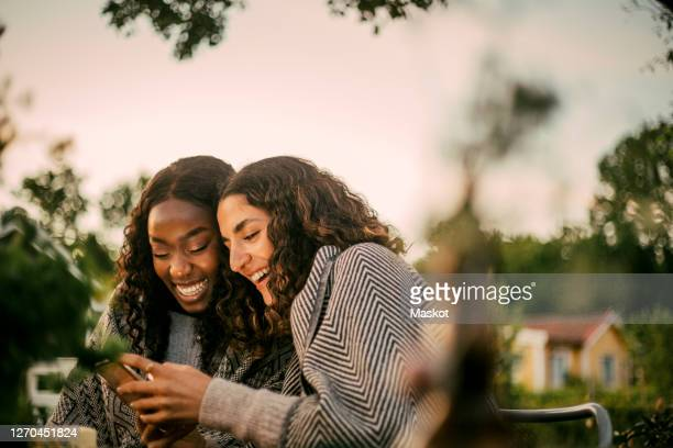 cheerful friends using phone in backyard during social gathering - garden party stock pictures, royalty-free photos & images