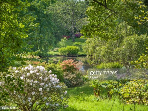 cheerful green - englefield berkshire stock pictures, royalty-free photos & images