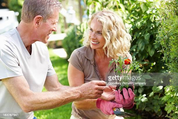 Joyeuse femme d'âge mûr avec un homme travaillant dans le jardin